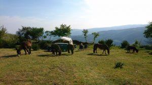 kindvriendelijke-camping-portugal
